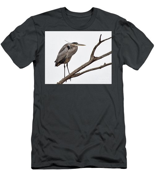 Out On A Limb Men's T-Shirt (Slim Fit) by Tamera James