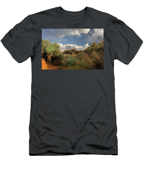 Out On The Mesa 4 Men's T-Shirt (Athletic Fit)