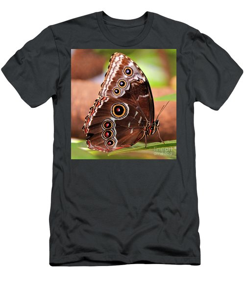 Owl Butterfly Portrait Men's T-Shirt (Athletic Fit)