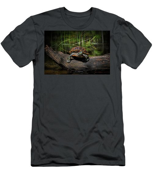 Painted Turtle Sunning Itself On A Log Men's T-Shirt (Athletic Fit)