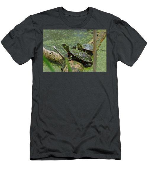 Painted Turtles Men's T-Shirt (Athletic Fit)