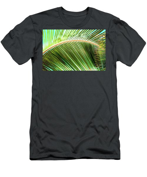 Palm Frond Sway Men's T-Shirt (Athletic Fit)