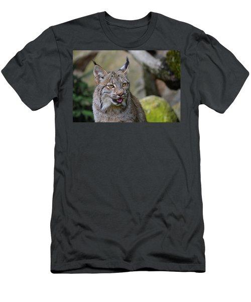 Panting Lynx Men's T-Shirt (Athletic Fit)