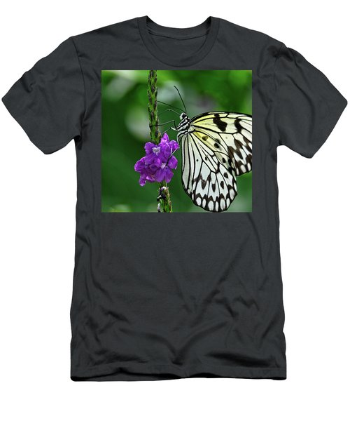 Paperkite Butterfly Closeup Men's T-Shirt (Athletic Fit)