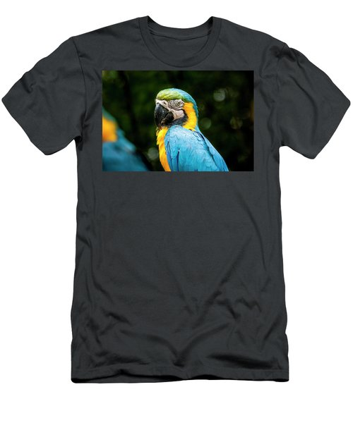 Parrot Men's T-Shirt (Athletic Fit)