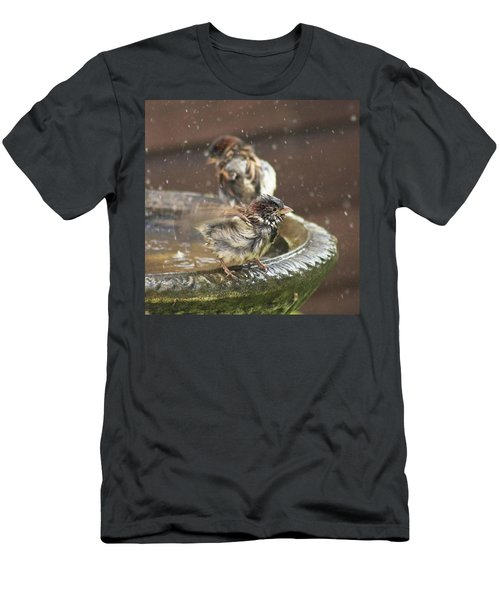 Pass The Towel Please: A House Sparrow Men's T-Shirt (Athletic Fit)
