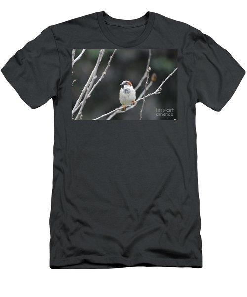 Passing Through  Men's T-Shirt (Athletic Fit)