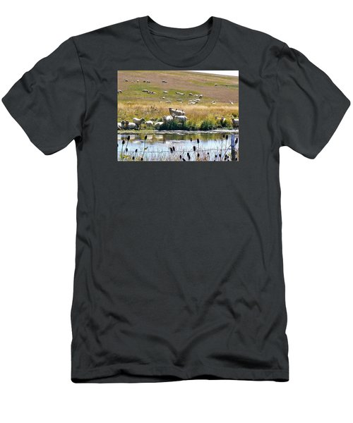 Pastoral Sheep By Pond Men's T-Shirt (Slim Fit) by Deborah Moen