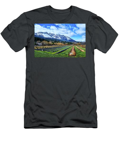 Landscape With Mountains And Farmlands In The Argentine Patagonia Men's T-Shirt (Athletic Fit)