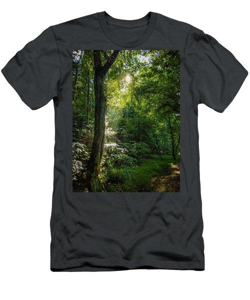 Path Lighting Men's T-Shirt (Athletic Fit)
