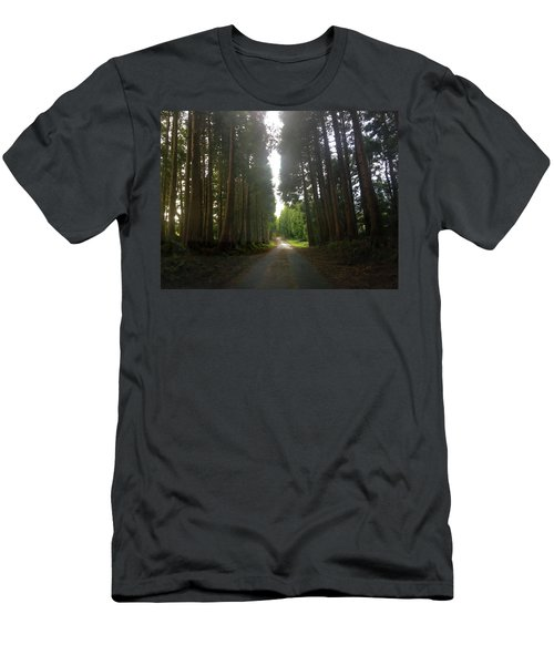 Path Through The Woods Men's T-Shirt (Athletic Fit)
