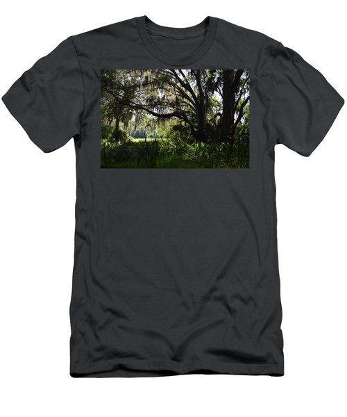 Paynes Prairie Border Men's T-Shirt (Athletic Fit)