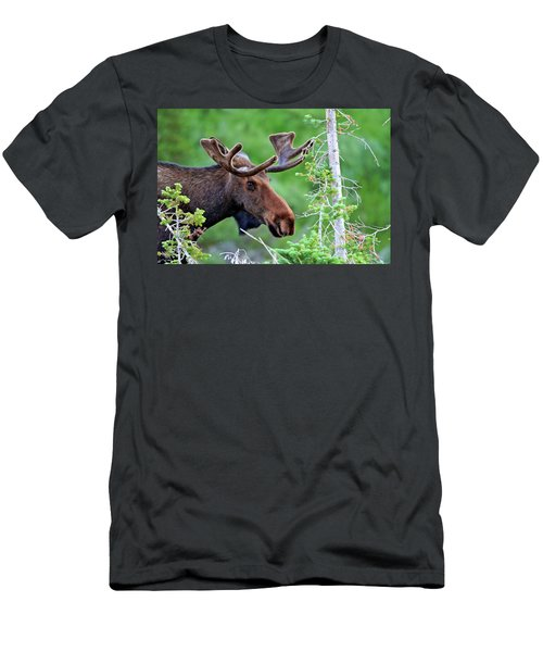 Men's T-Shirt (Slim Fit) featuring the photograph Peaking Moose by Scott Mahon