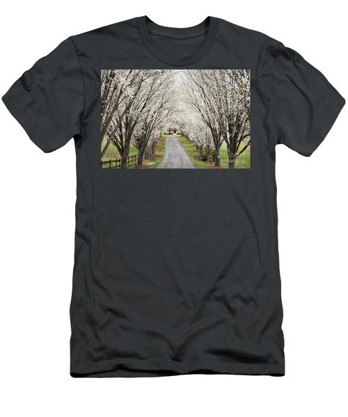 Men's T-Shirt (Slim Fit) featuring the photograph Pear Tree Lane by Benanne Stiens