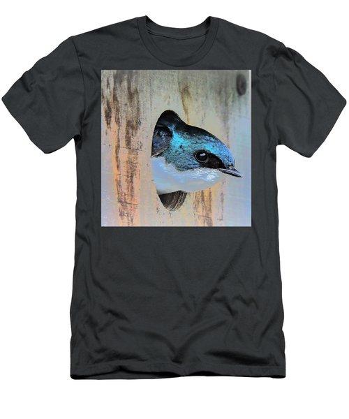 Peek-a-blue Men's T-Shirt (Athletic Fit)