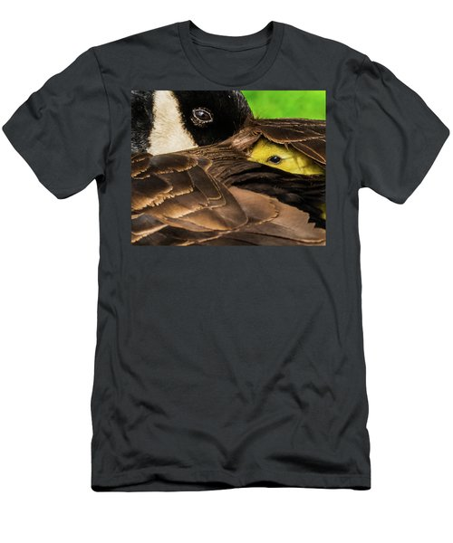 Peeking Gosling 8x10 Men's T-Shirt (Athletic Fit)