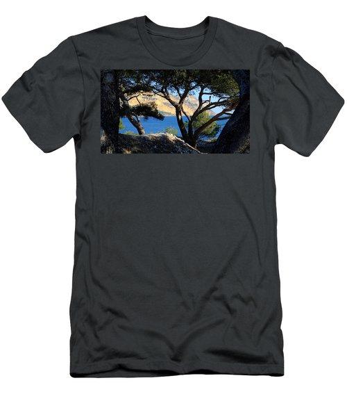 Peeping Through Pines Men's T-Shirt (Athletic Fit)