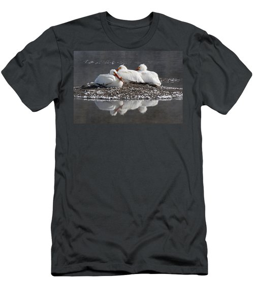 Pelicans Men's T-Shirt (Athletic Fit)