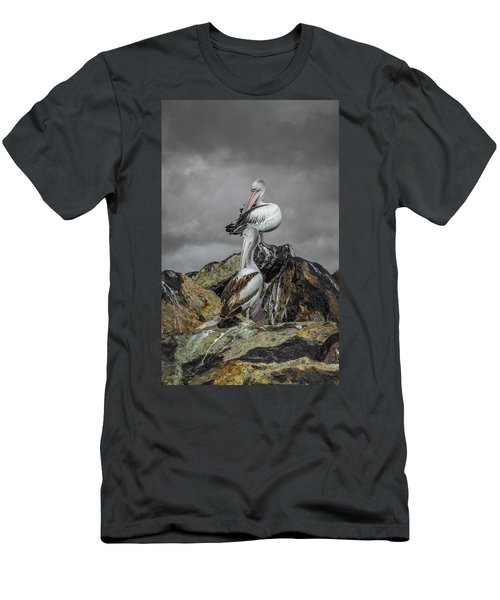 Pelicans On Rocks Men's T-Shirt (Athletic Fit)