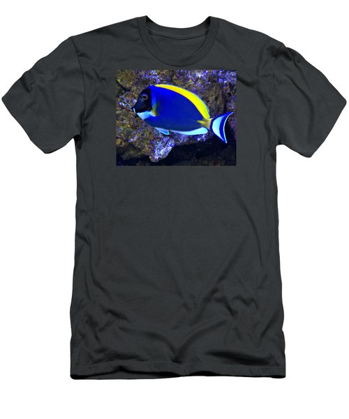 Blue Tang Fish  Men's T-Shirt (Slim Fit) by Kathy M Krause