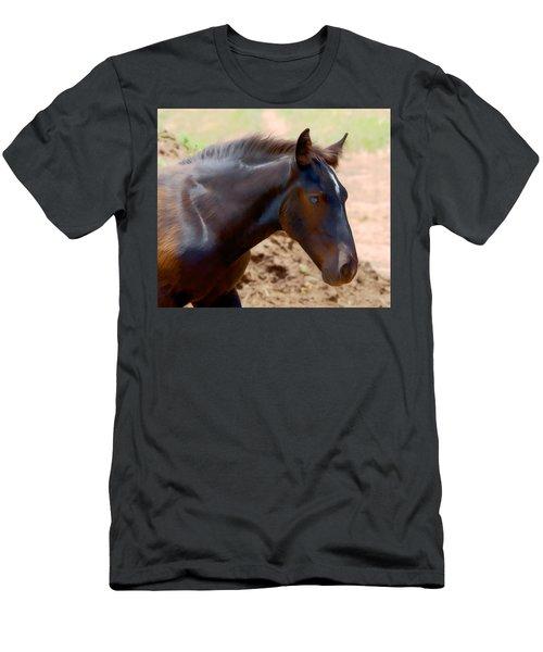 Percheron Colt - Digitalart Men's T-Shirt (Athletic Fit)