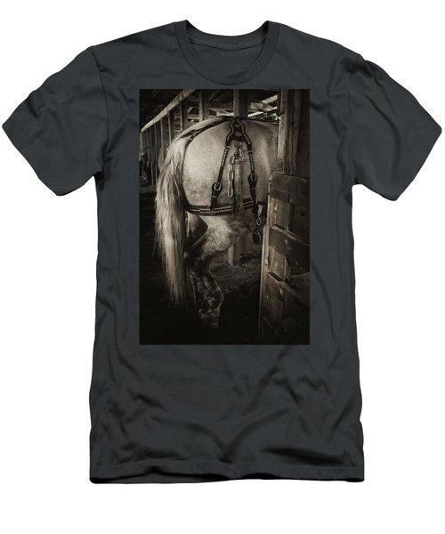 Men's T-Shirt (Slim Fit) featuring the photograph Percheron Draft Horse by Theresa Tahara