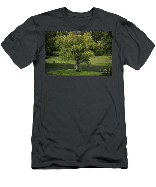 Perfect Tree Swing Men's T-Shirt (Athletic Fit)