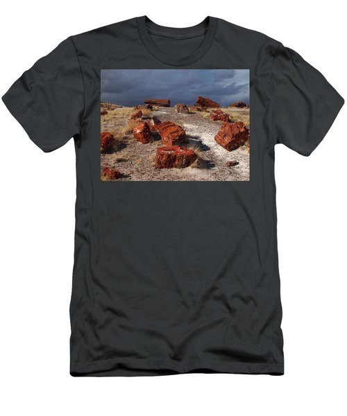 Men's T-Shirt (Slim Fit) featuring the photograph Petrified Forest National Park by James Peterson