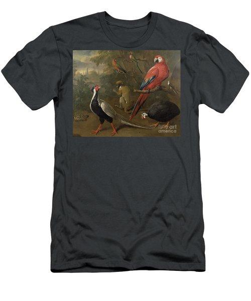 Pheasant Macaw Monkey Parrots And Tortoise  Men's T-Shirt (Athletic Fit)