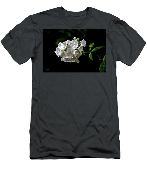 Phlox Flowers Men's T-Shirt (Athletic Fit)