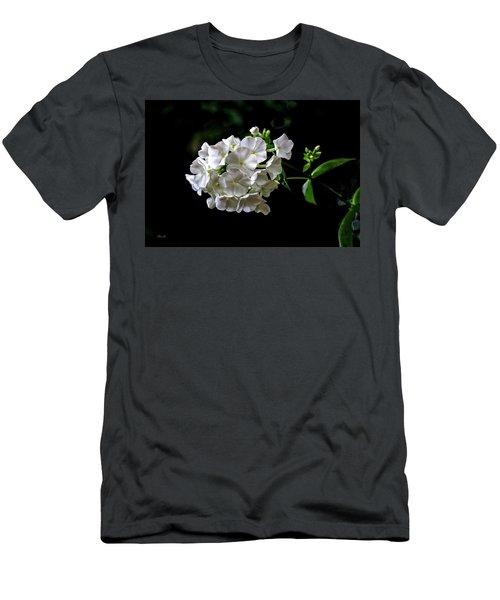 Phlox Flowers Men's T-Shirt (Athletic Fit)