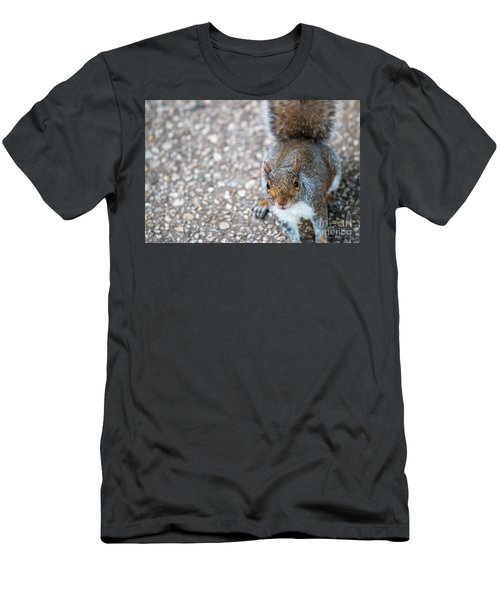 Photo Of Squirel Looking Up From The Ground Men's T-Shirt (Athletic Fit)
