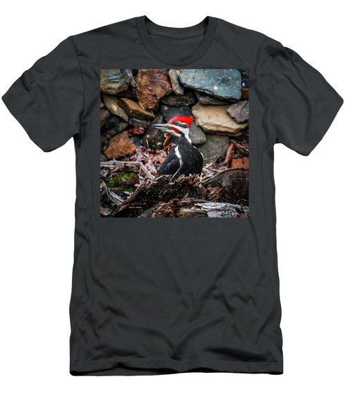 Pileated Pete Men's T-Shirt (Athletic Fit)