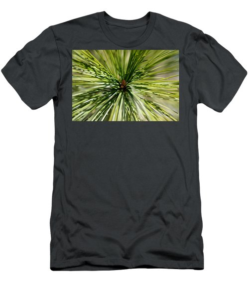 Pine Needles Men's T-Shirt (Athletic Fit)