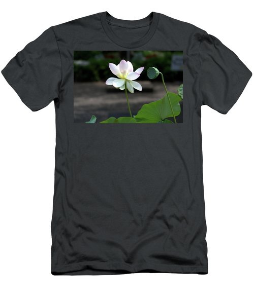 Pink And White Water Lily With Green Pod Men's T-Shirt (Athletic Fit)