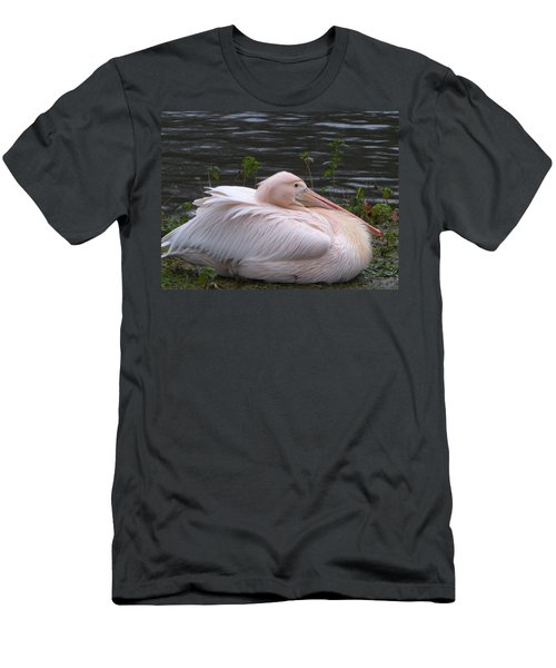 Pink Pelican Men's T-Shirt (Slim Fit) by Margaret Brooks