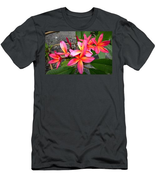 Pink Plumerias Men's T-Shirt (Athletic Fit)
