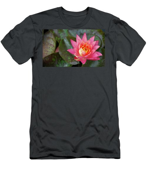 Men's T-Shirt (Athletic Fit) featuring the photograph Pink Water Lily Beauty by Amee Cave