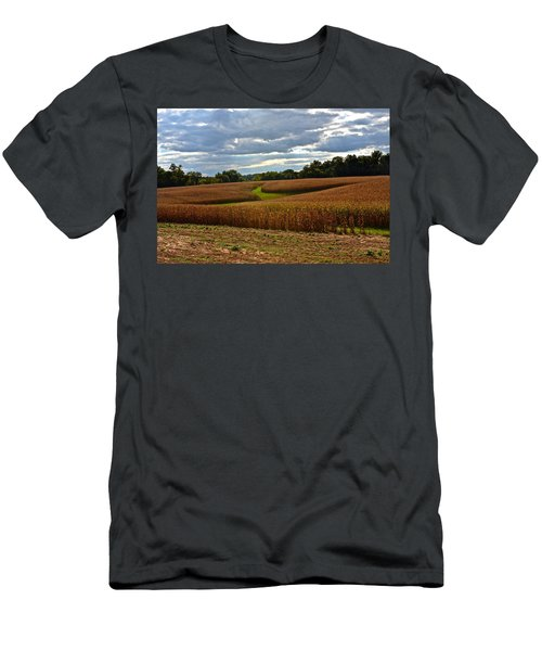 Pinwheel Cornfield Men's T-Shirt (Athletic Fit)