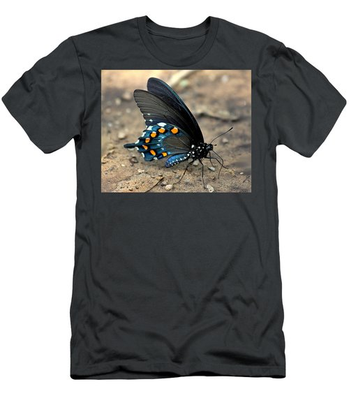 Pipevine Swallowtail Close-up Men's T-Shirt (Athletic Fit)