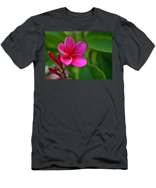 Plumeria - Royal Hawaiian Men's T-Shirt (Athletic Fit)