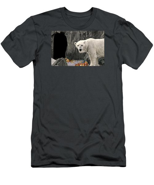 Polar Bear 101 Men's T-Shirt (Slim Fit) by Diana Angstadt