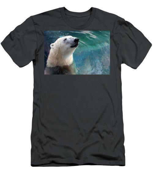 Polar Bear Up Close Men's T-Shirt (Athletic Fit)