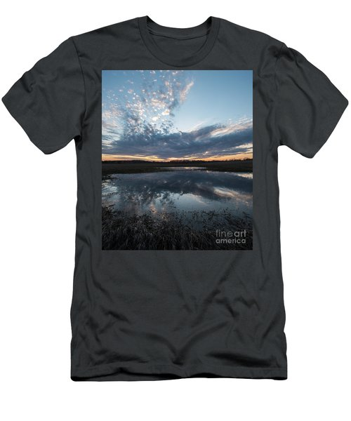 Pond And Sky Reflection3a Men's T-Shirt (Athletic Fit)