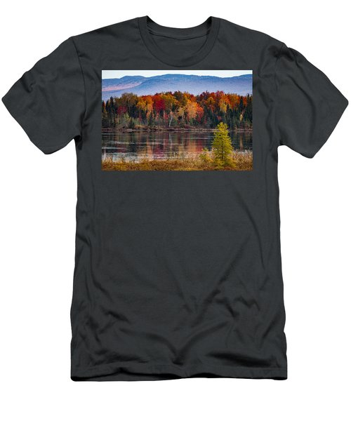 Pondicherry Fall Foliage Reflection Men's T-Shirt (Athletic Fit)
