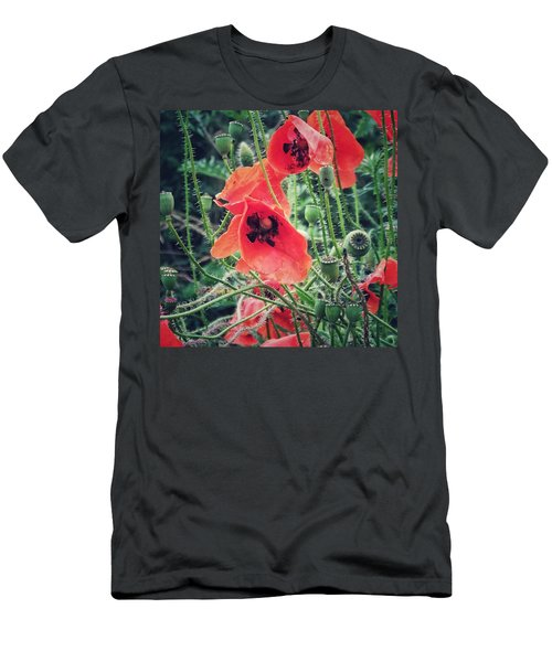 Poppies Men's T-Shirt (Slim Fit) by Karen Stahlros