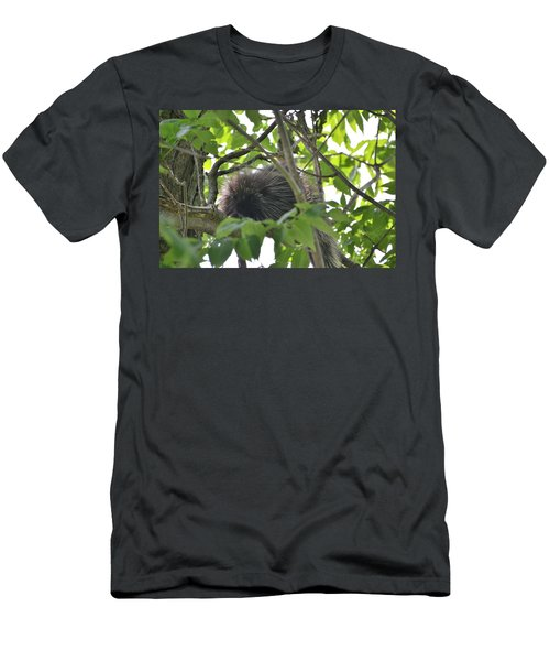 Porcupine Men's T-Shirt (Athletic Fit)