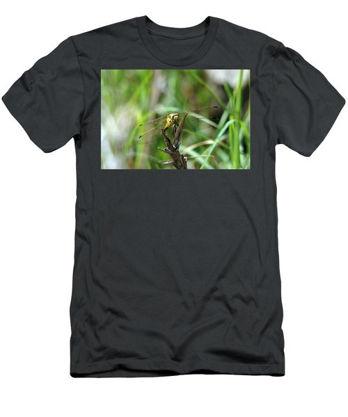 Portrait Of A Dragonfly Men's T-Shirt (Athletic Fit)
