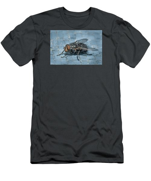 Portrait Of A Young Insect As A Fly Men's T-Shirt (Slim Fit) by Greg Nyquist