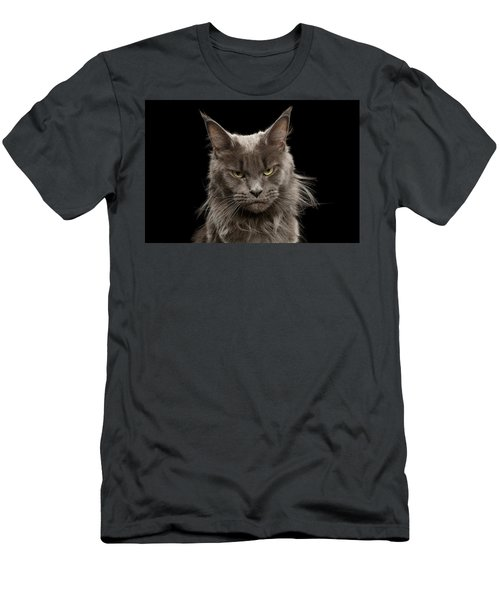 Portrait Of Angry Maine Coon On Black Men's T-Shirt (Athletic Fit)